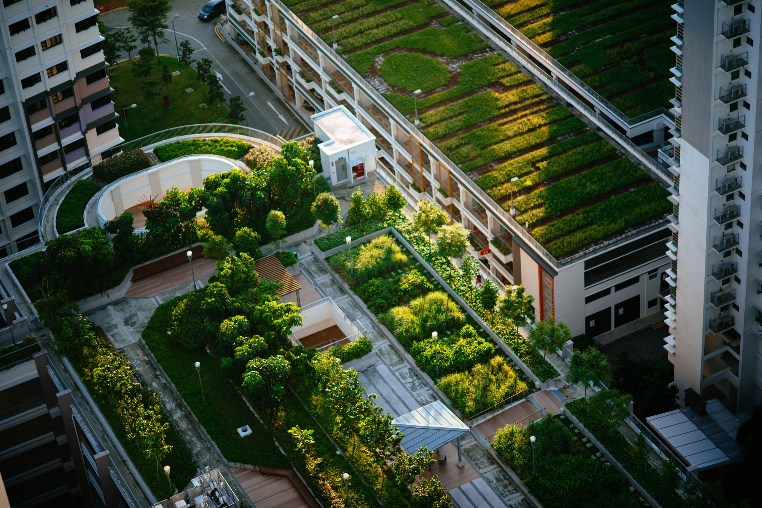 Sustainable Ecological City