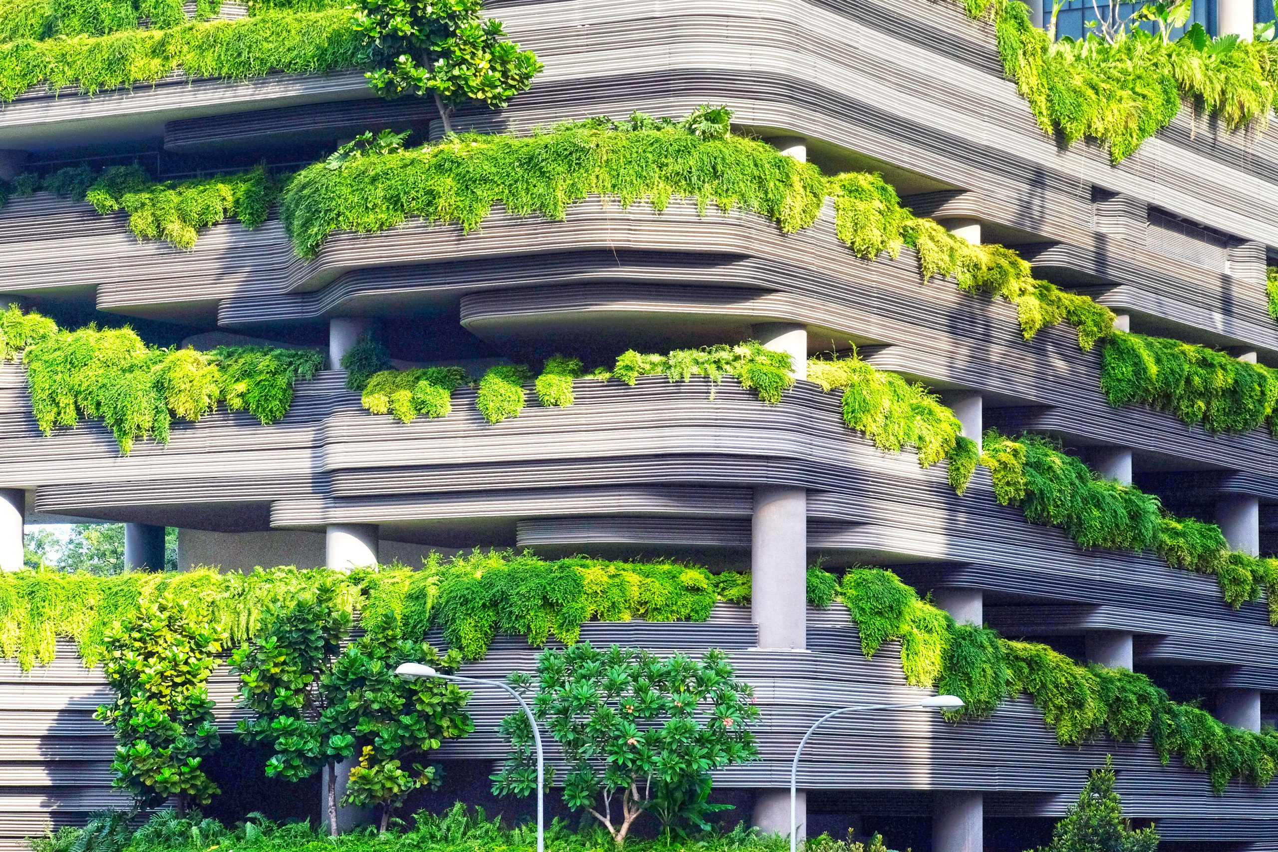 Sustainable Healthy City